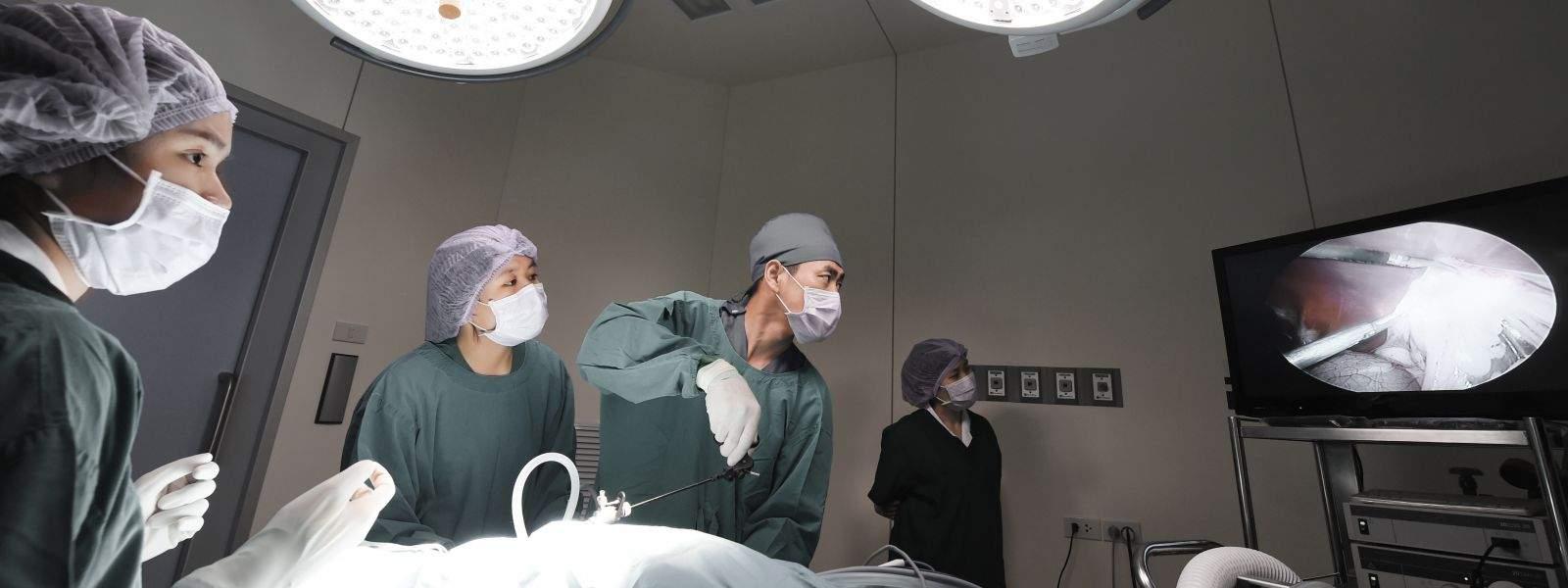 Clínica Médica e Cirúrgica De Animais Silvestres e Exóticos Mantidos Como Pet